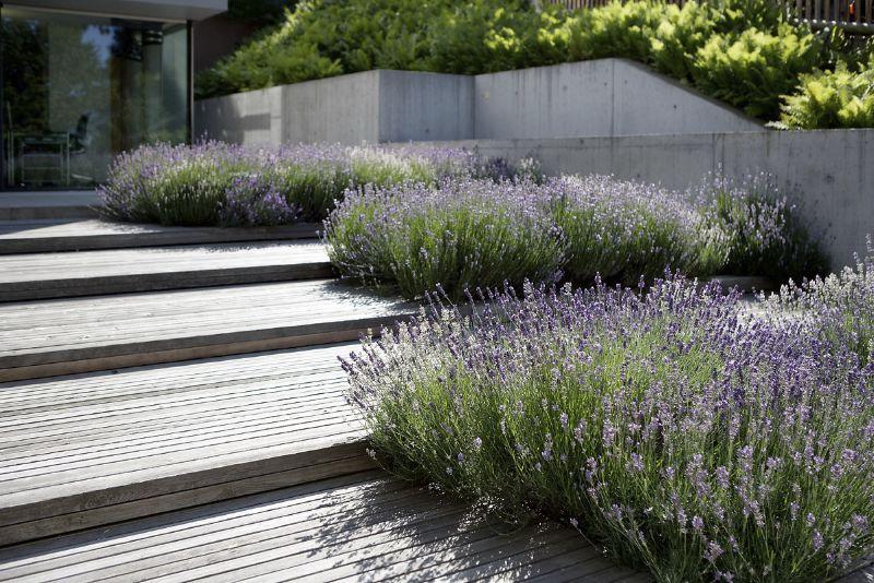 gartengestaltung gartenplanung zürich - berner gartenbau - gärten, Garten ideen